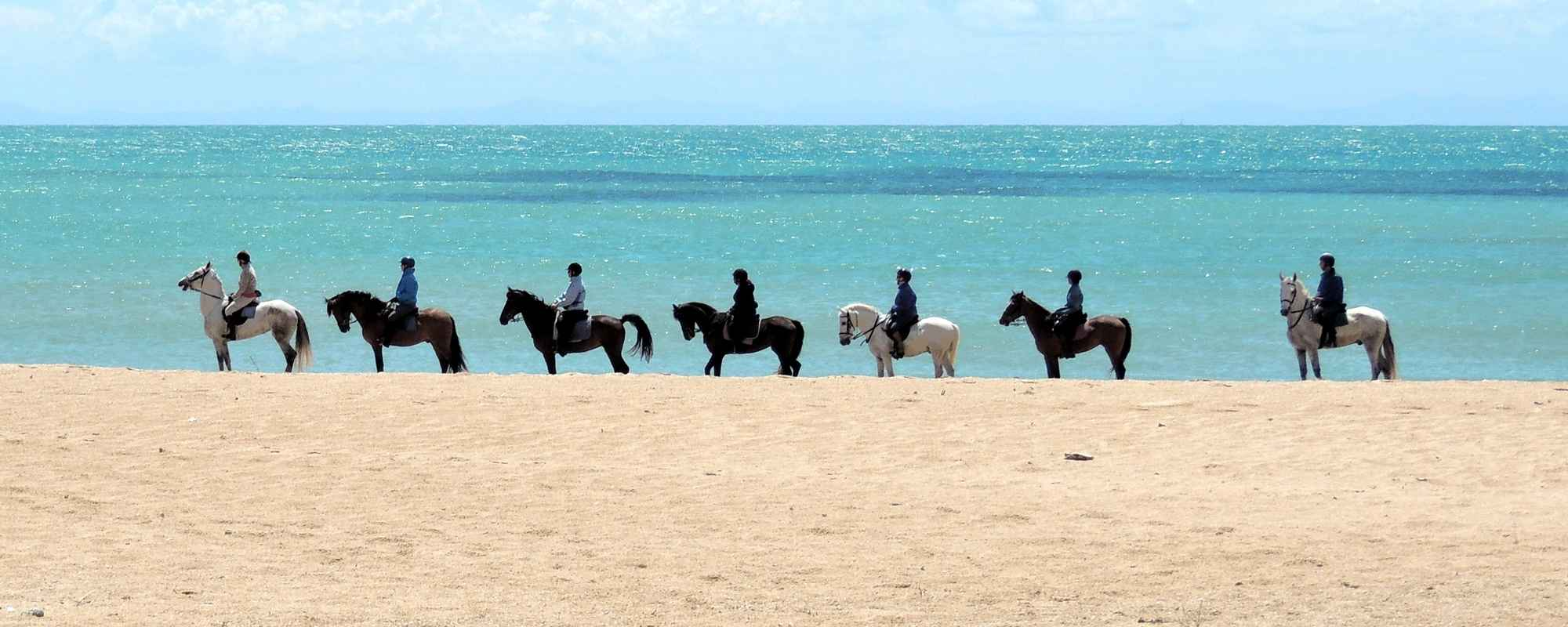 Cadiz horse riding
