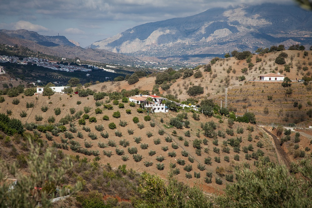Casa Alora on Mountain