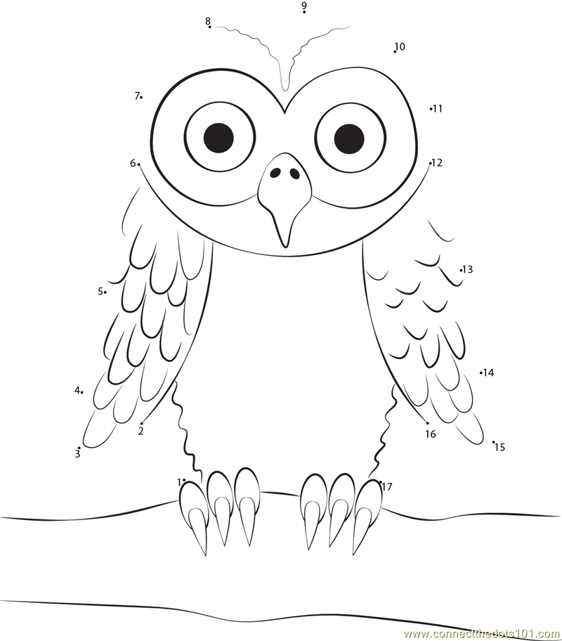 Owl Sitting On Tree Branch Dot To Dot Printable Worksheet