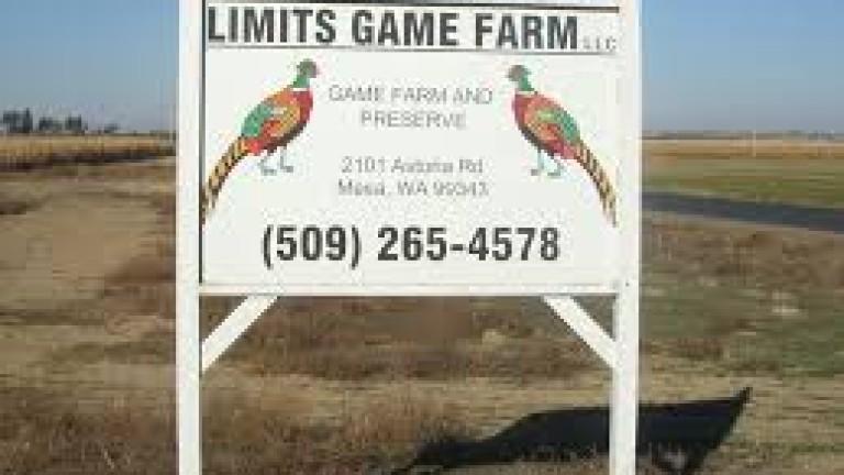 limits game farm