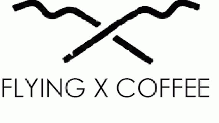 flying x