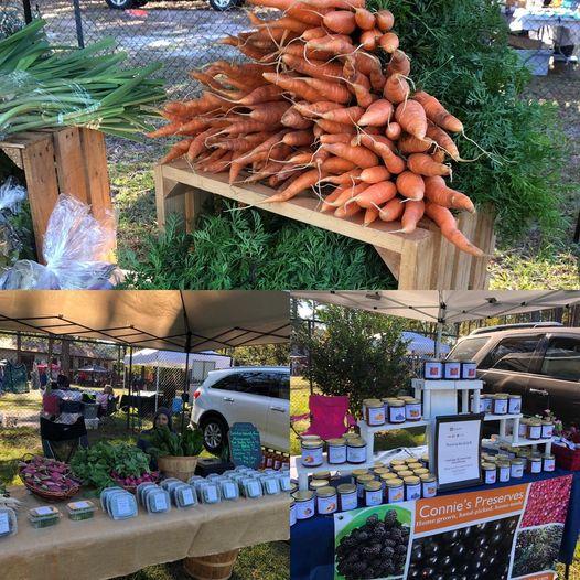 Connie's Jam Waygreen Market