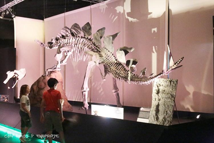 museo-dinopolis
