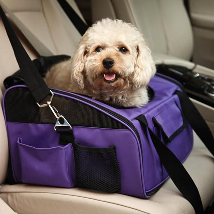 Transportín de coche para perros