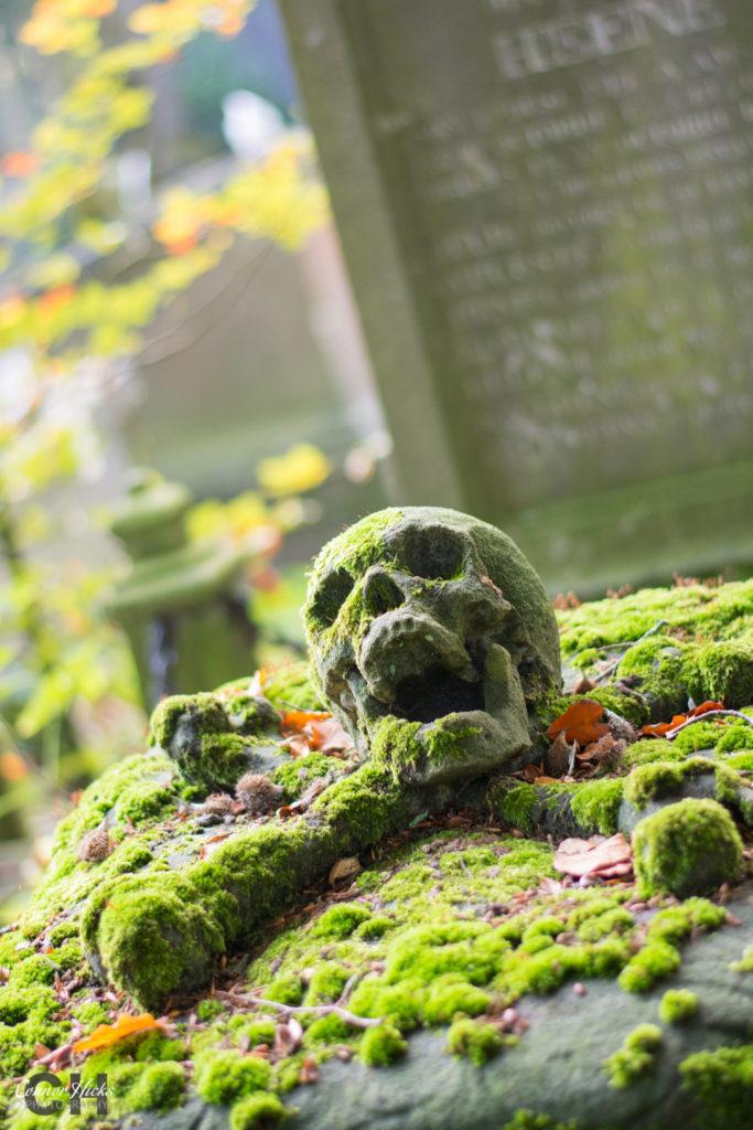 Centrale Begraafplaats Brugge Cross Bones Skull 683x1024 Urbex Gallery