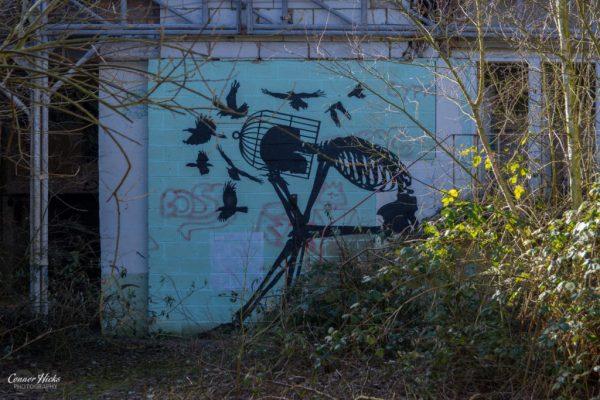 graffiti belgium skeleton urbex 1024x683 Skeleton Warehouse, Belgium