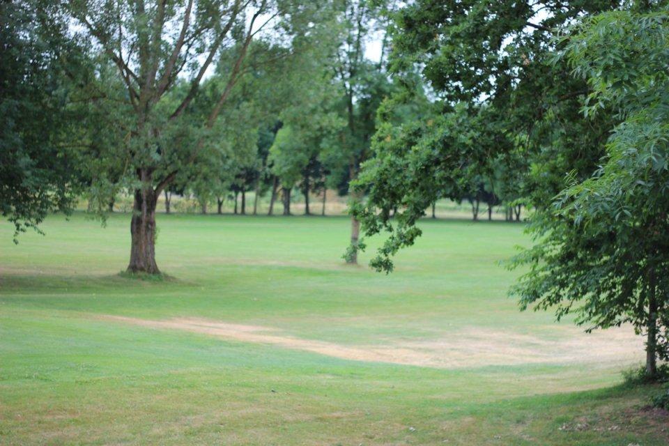 Golfclub Sagmühle, Conny Doll spielt Golf, alter Baumbestand,