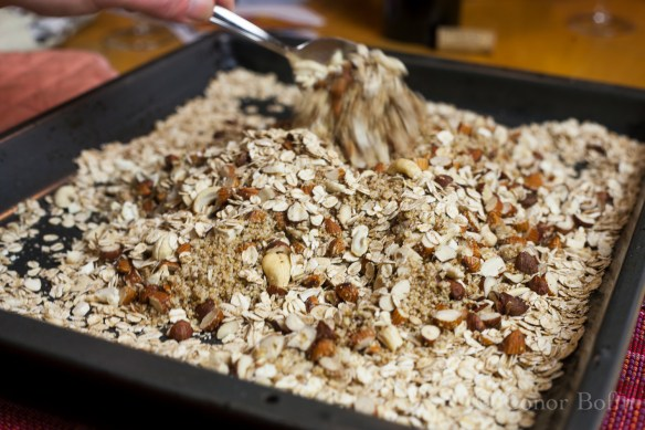 Jumbo Oatflakes, Chopped Almonds, Grated Coconut and Wheatgerm