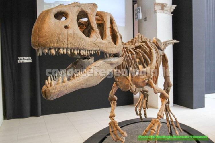 Piatnitzkysaurus floresi, predatore