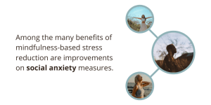 The Mindfulness-Based Stress Reduction program has been shown to reduce social anxiety.