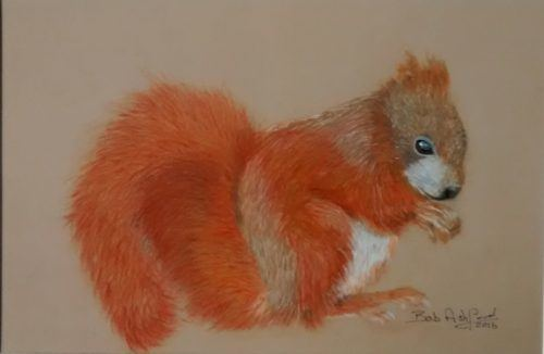 Squirrel drawing painting