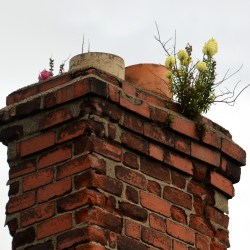 Ramonage de votre cheminée: une nécessité ou une obligation