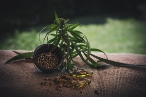 acheter graines de cannabis