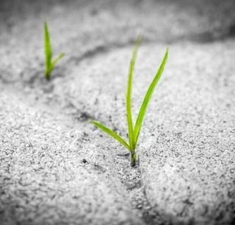 El poder de la persistencia