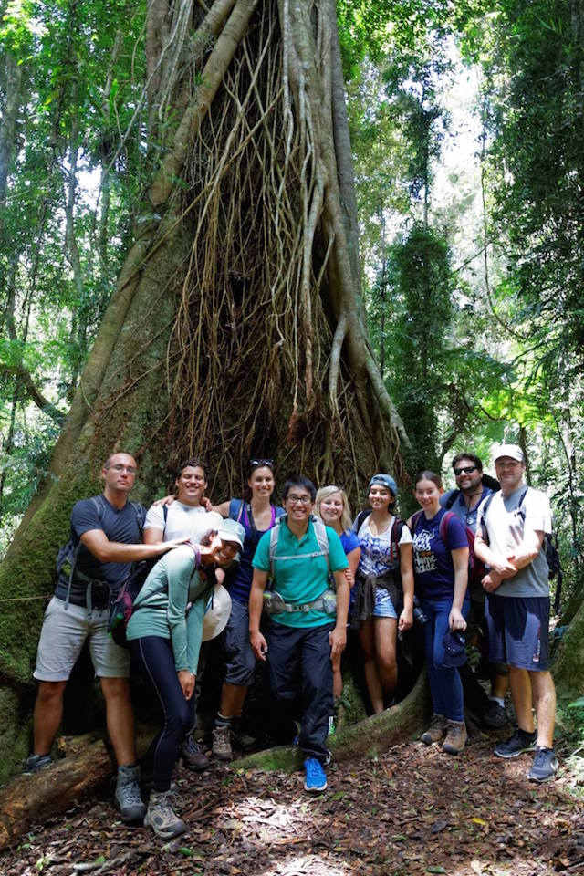 Some of the 2015/16 cohort in Lamington National Park, learning what makes subtropical rainforest unique from other forest types. Credit: Chi Chiu Lo.