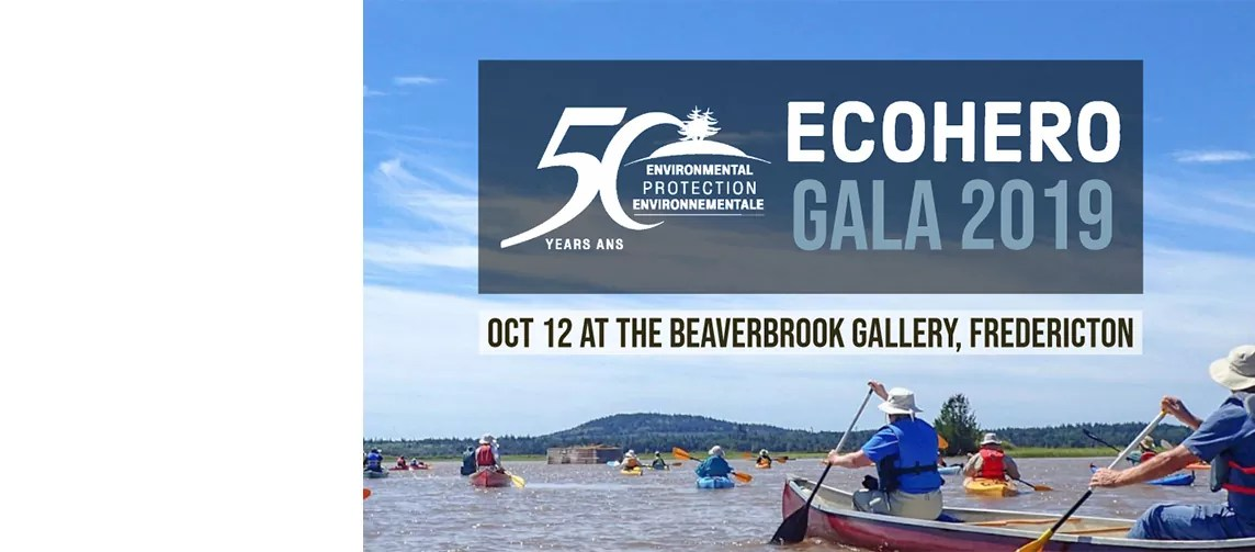 Eco Hero Gala 2019 — Celebrate 50 years of environmental action in New Brunswick