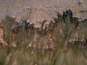 Water on Mars flows down the wall of the Newton crater in Martian summer.