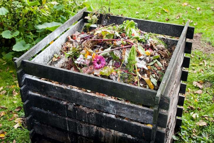 31 Things You Should Never Put In Your Compost Heap Conserve Energy Future