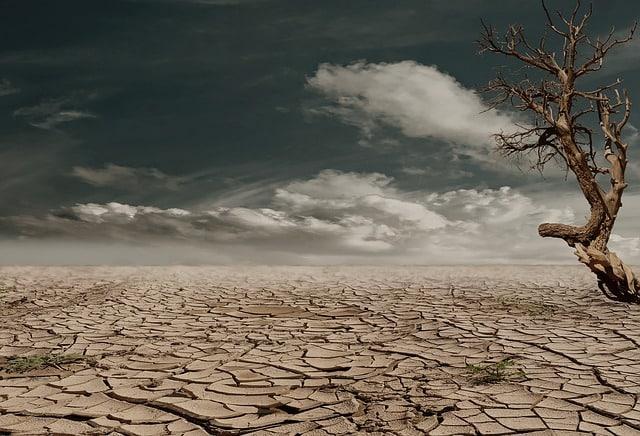 desert-seca desidratado-argila do solo