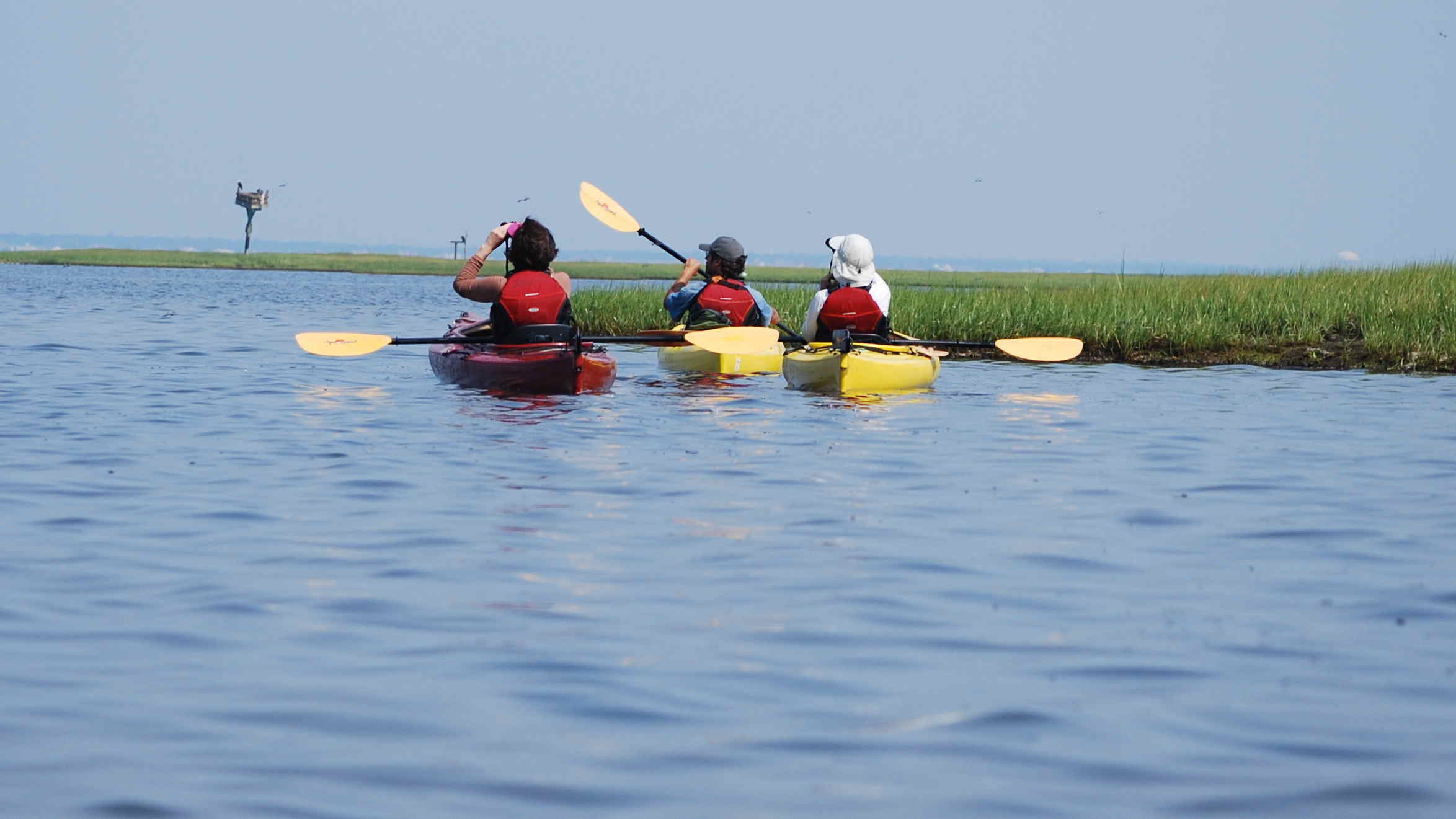 Kayak Tours Nj