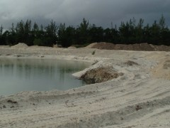 Clearing for development in the Bahamas.