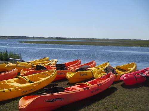 Kayaking at Sedge Island (c) Stephanie Feigin