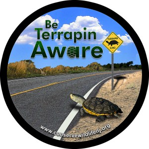 """Be Terrapin Aware"" decal to spread awareness and to thanks those who participated in the patron survey."