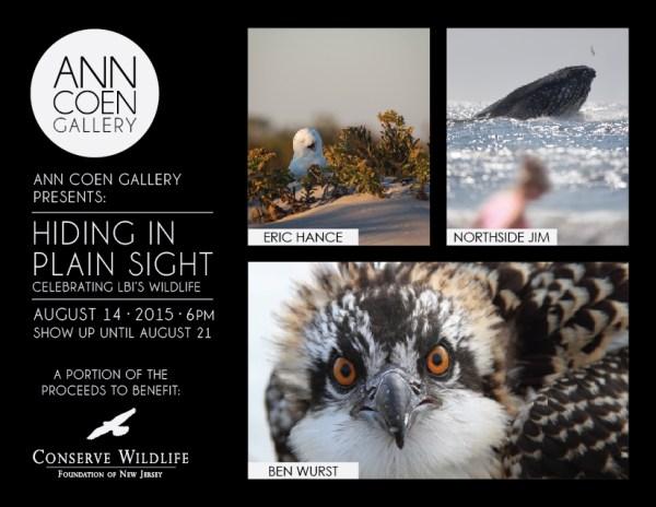 Ann Coen Conserve Wildlife Postcard