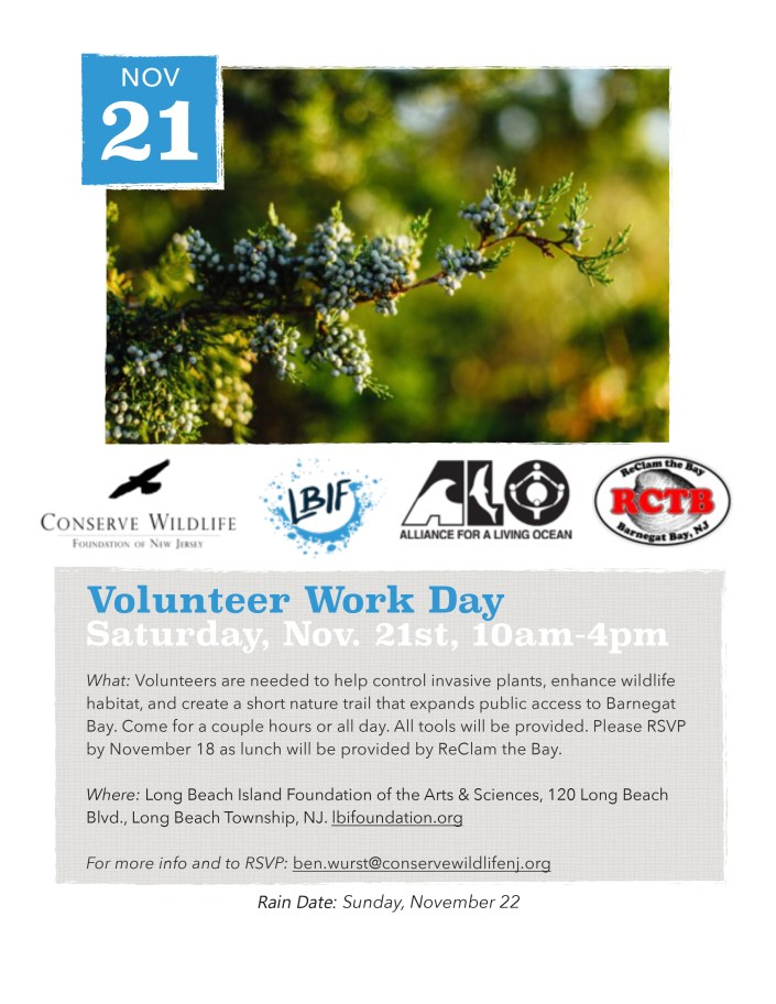 LBIF Work Day Flyer 11-20-15