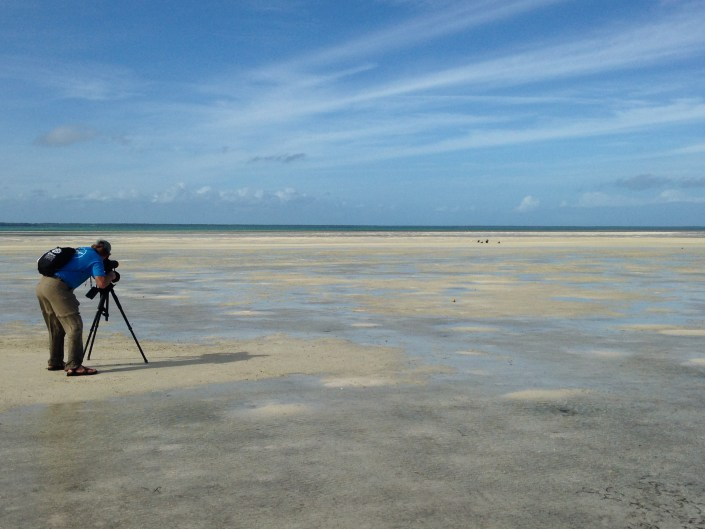 The author, CWF's Todd Pover, scoping out  piping plovers during the census.