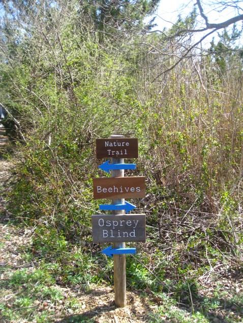 Trail markers. Photo by Teresa Hagan.