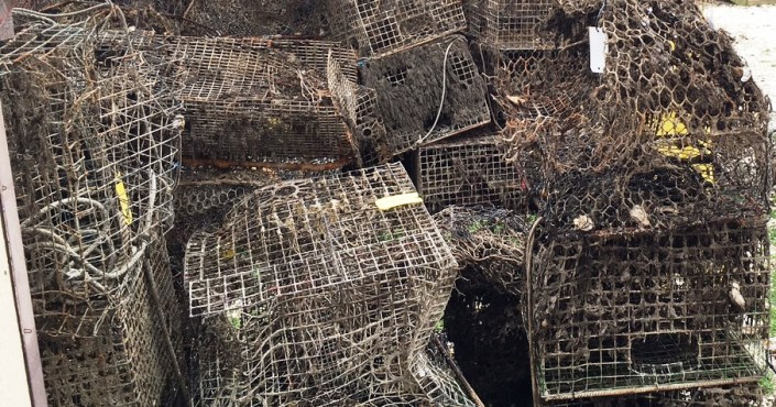 A pile of abandoned crab pots before being processed at the WeCrab community day.