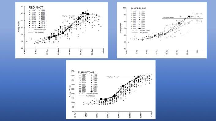 weight graphs