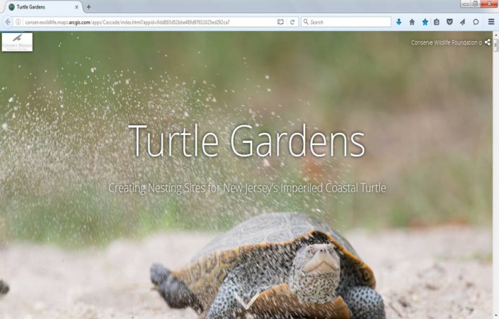 Screen-shot of the Turtle Gardens story map.