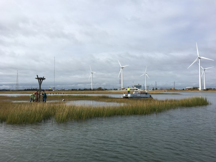 Volunteers work on a flooded saltmash to remove an osprey nesting platform in Atlantic City.