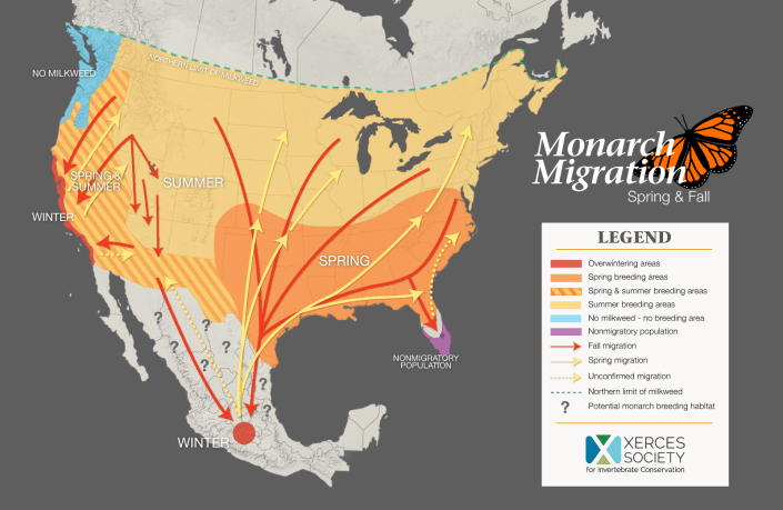 From the Xerces Society. Map depicts the known general migration routes of monarch butterflies.
