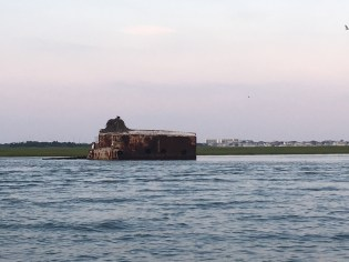 A huge osprey nest is built atop a shipwreck in Wildwood.