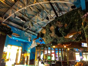 Fun things to do with kids in Destin, Fl