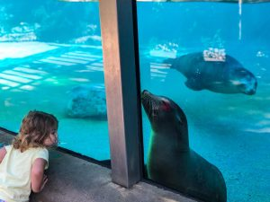 Fort Wayne Zoo