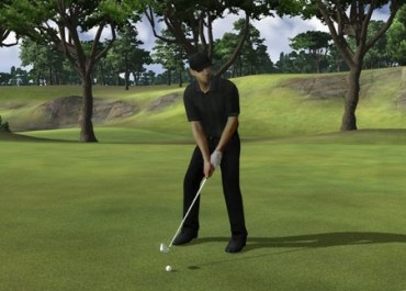 John Daly's Pro Stroke Golf Review