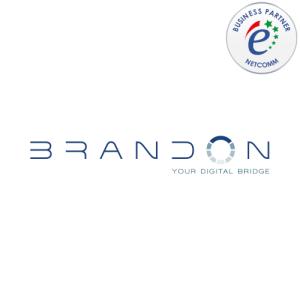Brandon socio netcomm