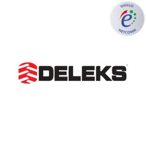 logo deleks socio netcomm