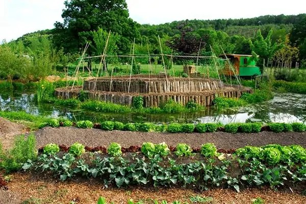 micro-ferme-bec-helloin-agriculture-02
