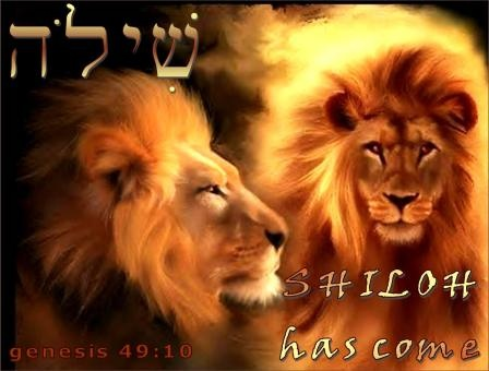 Genesis Shiloh
