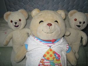 Teddy Bears.Tommy_Bear_and_Snuggles.jpg