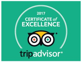 Constantly Kiting 2017 Certificate Of Excellence