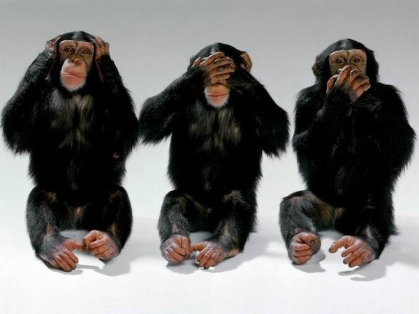 Anche se talvolta si fa come le tre scimmiette non vedo non sento non parlo...
