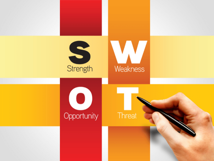 Swot Analysis Personale