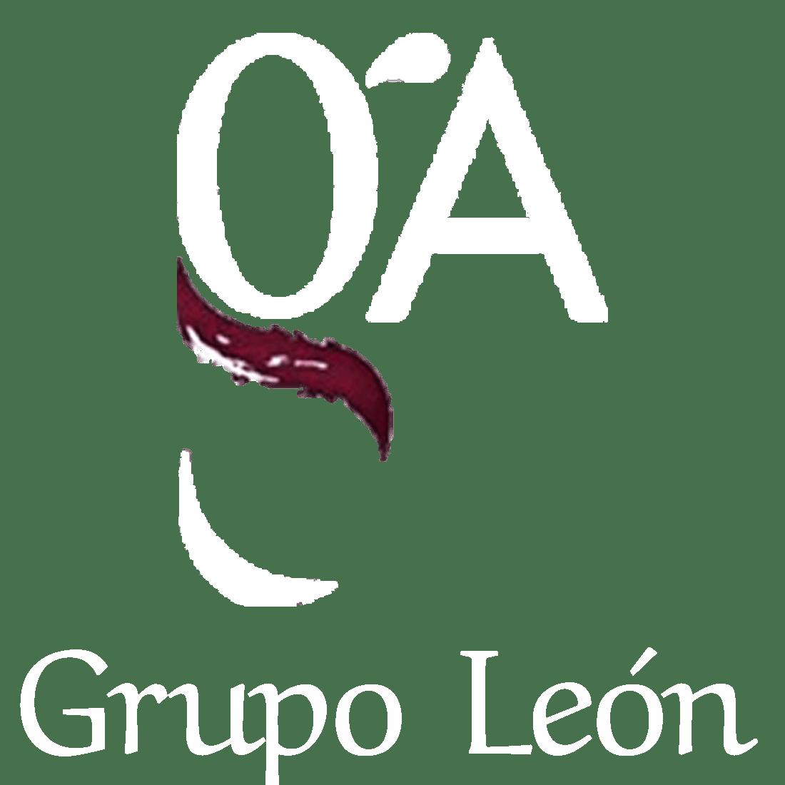 Consultoría Grupo León