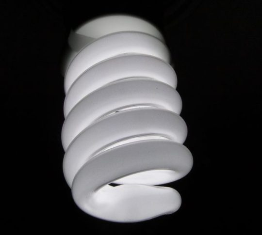recycle light bulb CFL